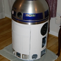 Back view, showing the working rear logic lights in the dome.
